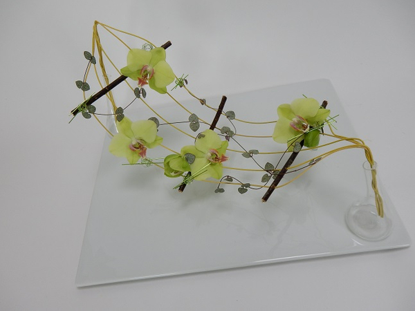 Balance the orchids and vine between two small glass vases.