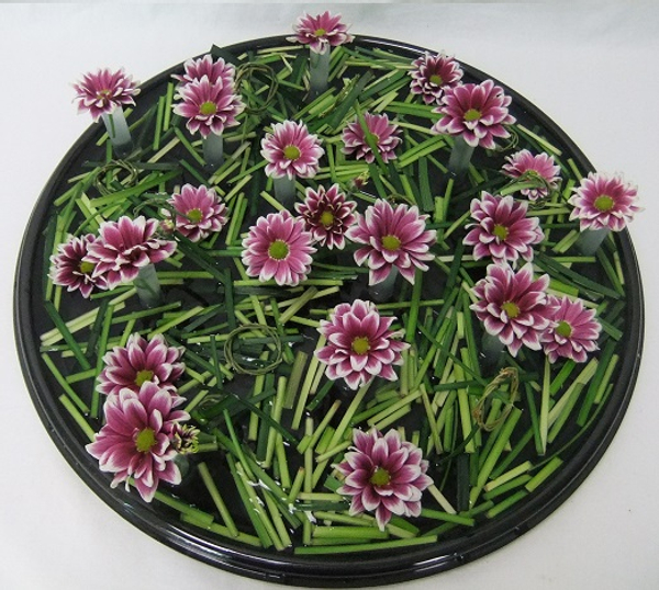 Chrysanthemum and floating grass snippets