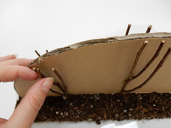 Gently push each twig down into the foundation until it exactly match the shape of the cardboard
