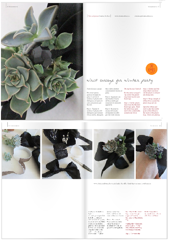 Succulent bracelet featured in Blossom Zine