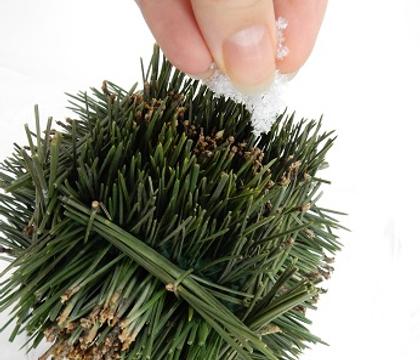 Prickly Pine-needle Square