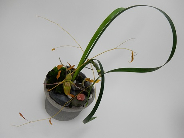 Using a traditional Ikebana Kenzan to create a shallow container design