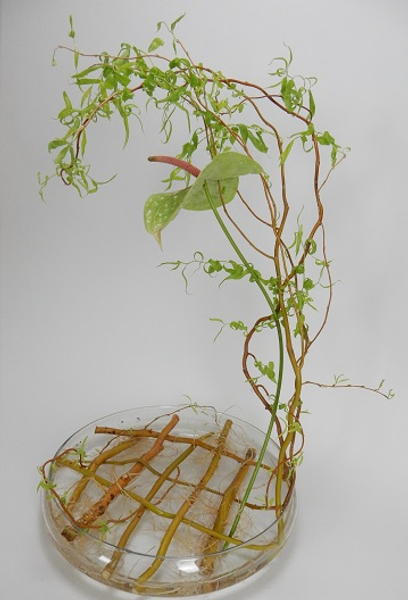 Weaving a willow armature