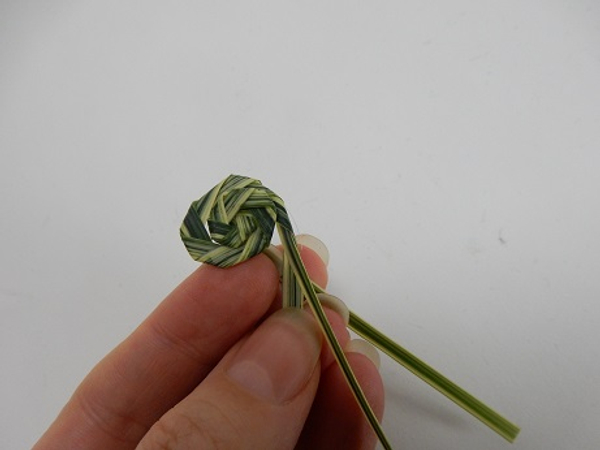 Build up the snail shell by folding spiral after spiral