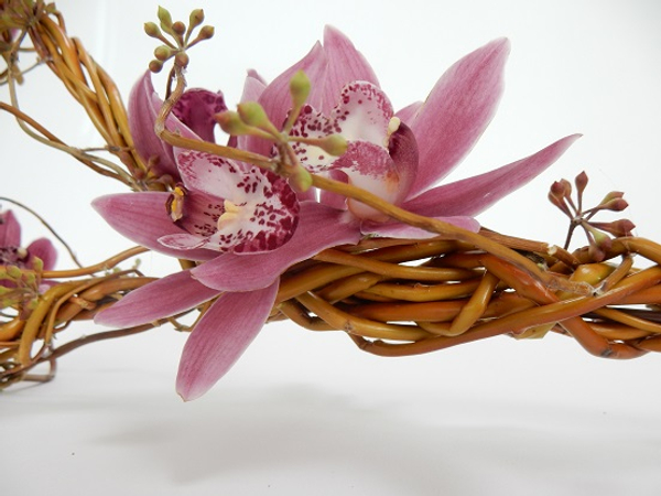 Cymbidium orchids, eucalyptus capsules and willow