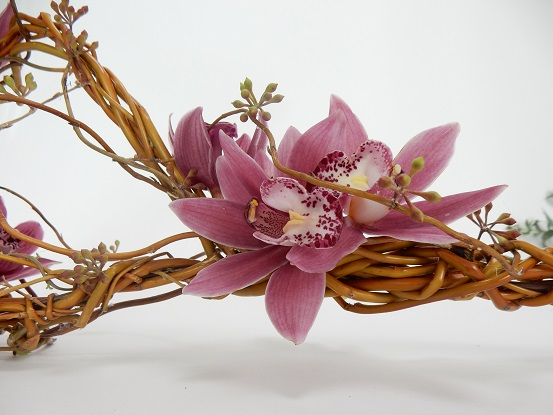 Cymbidium orchids on a willow wand