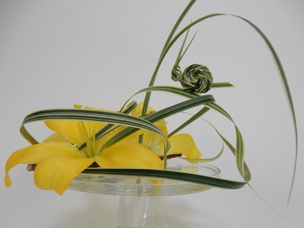 Lilies and grass snail