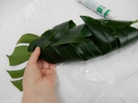 Fold over a tropical leaf cocoon