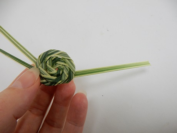 Weave the harder stem part through the spiral to the back