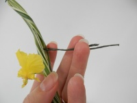 Hairpin wire to balance a thin bundle of grass on a vase