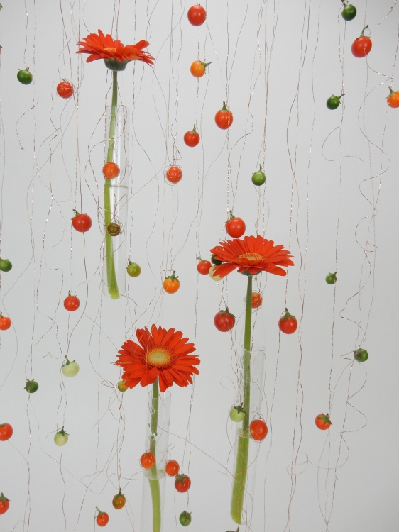 Gerbera Daisy screen design