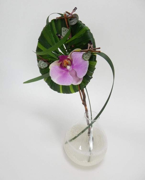 Grass armature for a Phalaenopsis orchid
