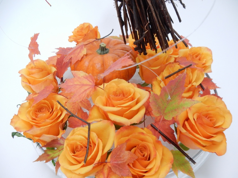 Roses and fall leaves