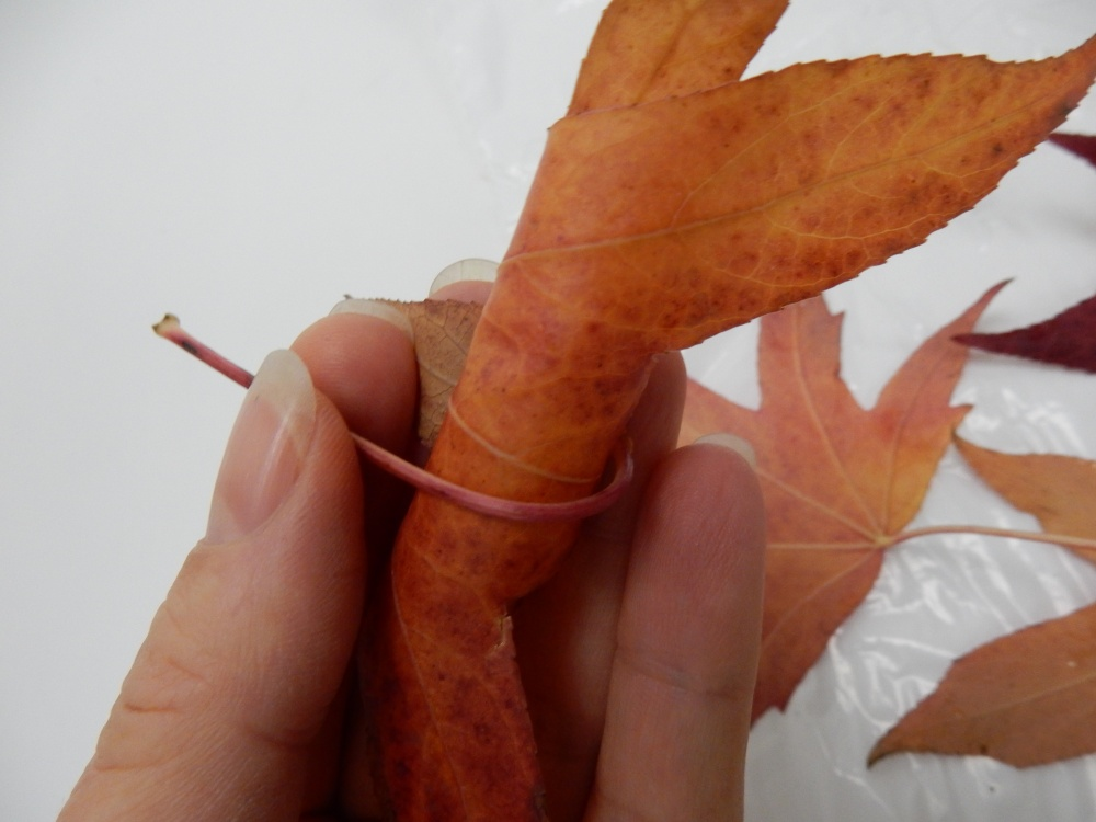 Wrap the stem around the leaf to secure