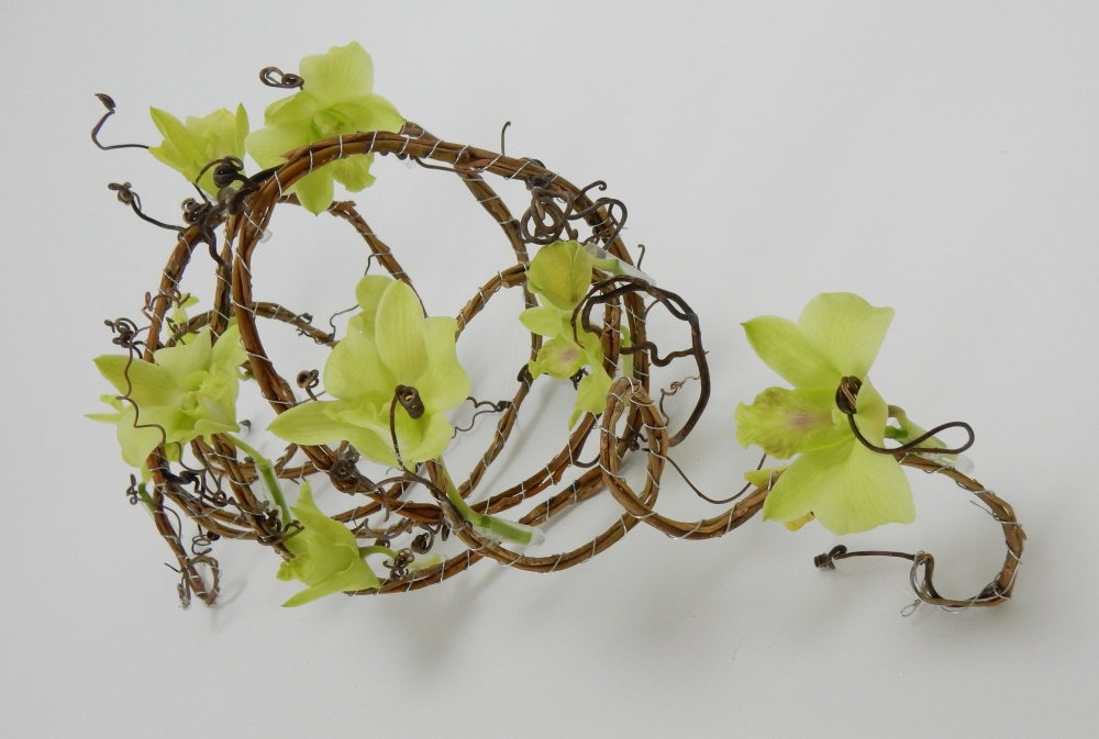Dendrobium orchid, willow and grape vine tendrils