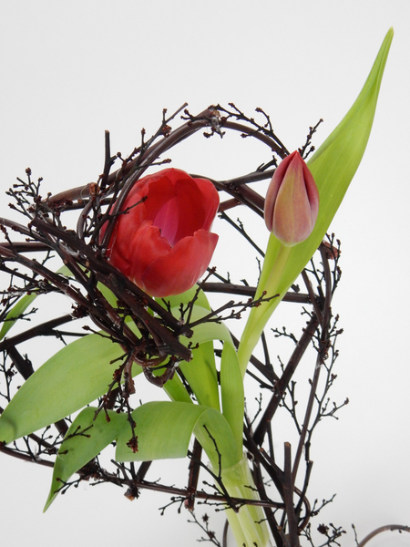 Twig and wire tulip heart