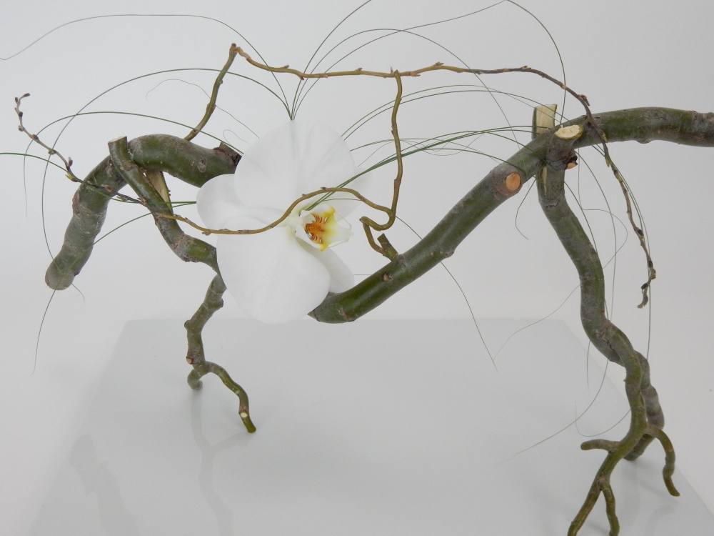 Free standing willow twig armature