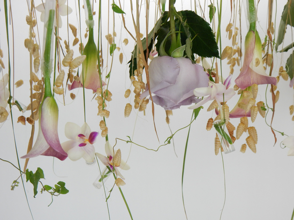 Hanging flowers upside down