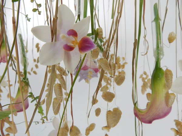 Suspend flowers