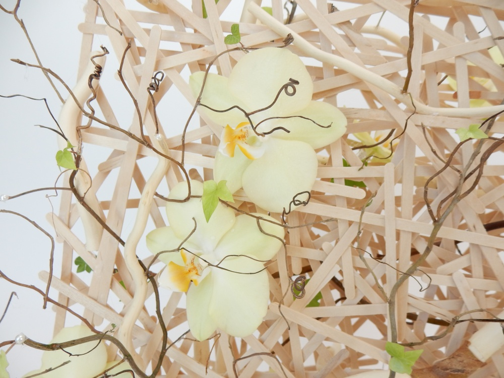 Phalaenopsis orchids on a popsicle stick armature