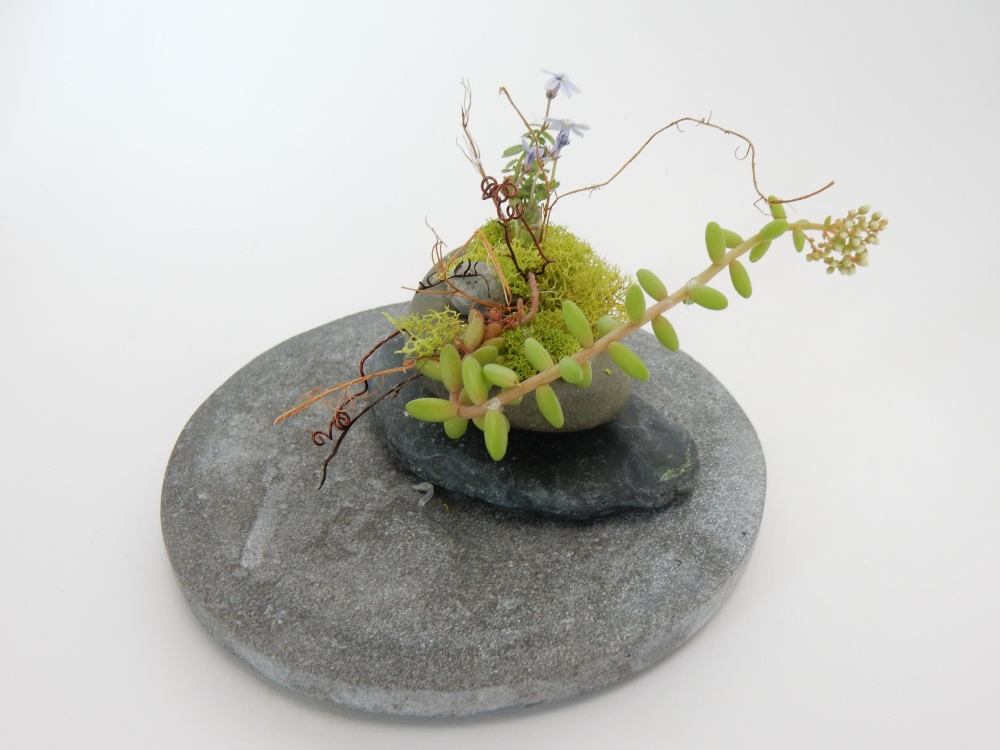 and a scrap of a left over succulent and moss