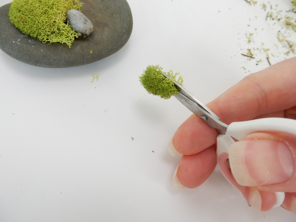 Cut the moss with sharp scissors to create a flat surface for the glue