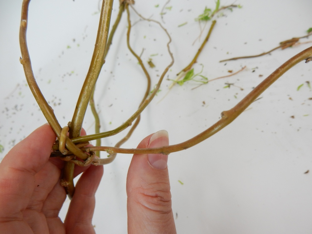 Press a thin stem in the bottom looped side of the stems