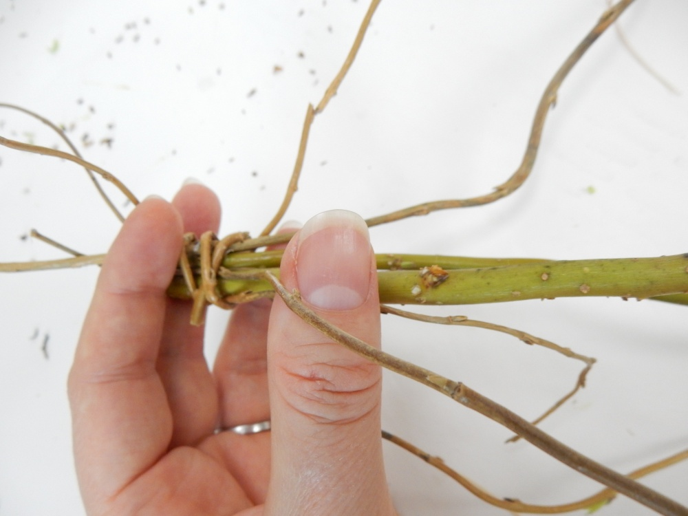 Press a thin stem into the top where the willow stems are connected