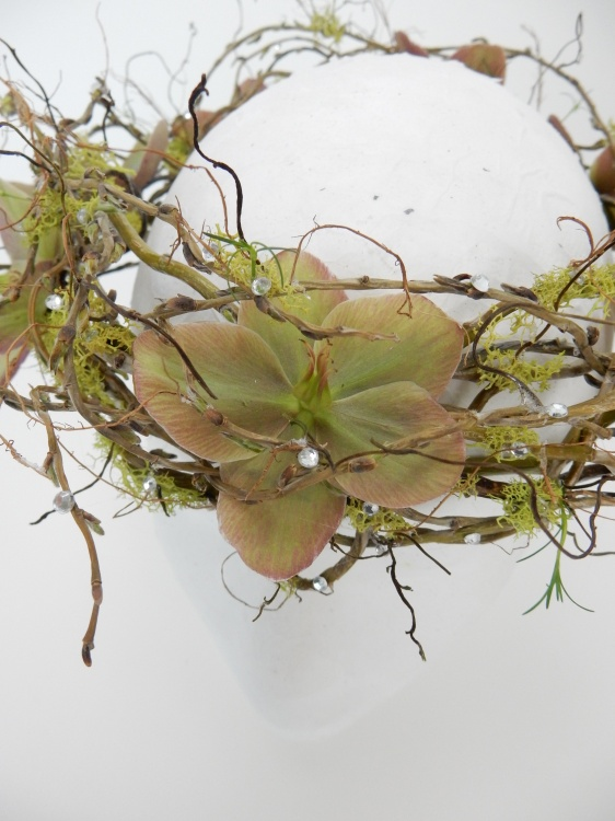 Hellebores and Willow crown