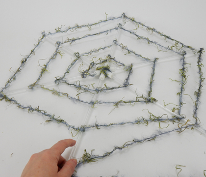 Acrylic Spiderweb