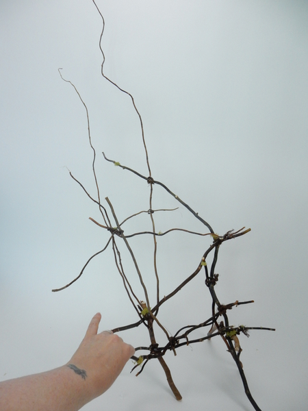 Spider web twig tangle