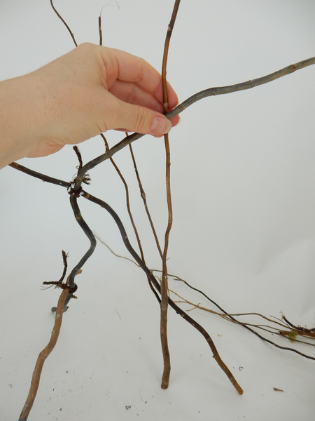 When it is completely secure add more twigs to create more stability and strength