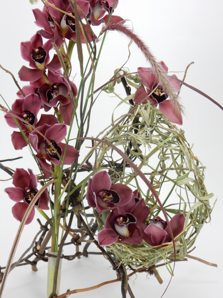 Grass and orchid nest