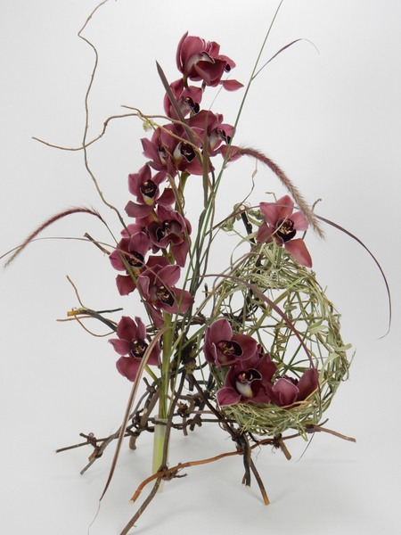Orchids nestled in a nest