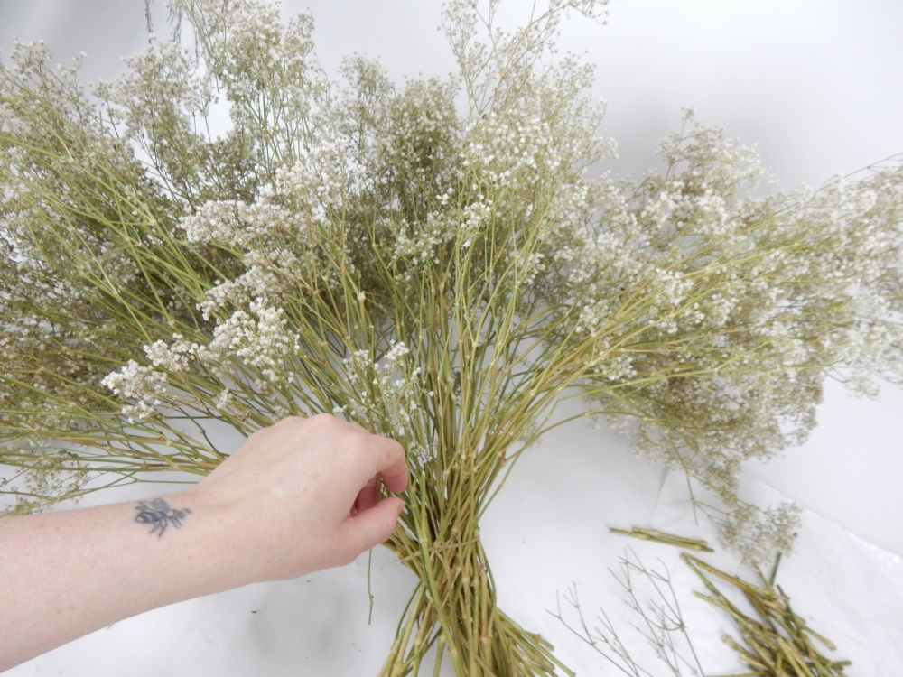 Cut the tiny flowers away from a huge bunch of dried Baby's breath