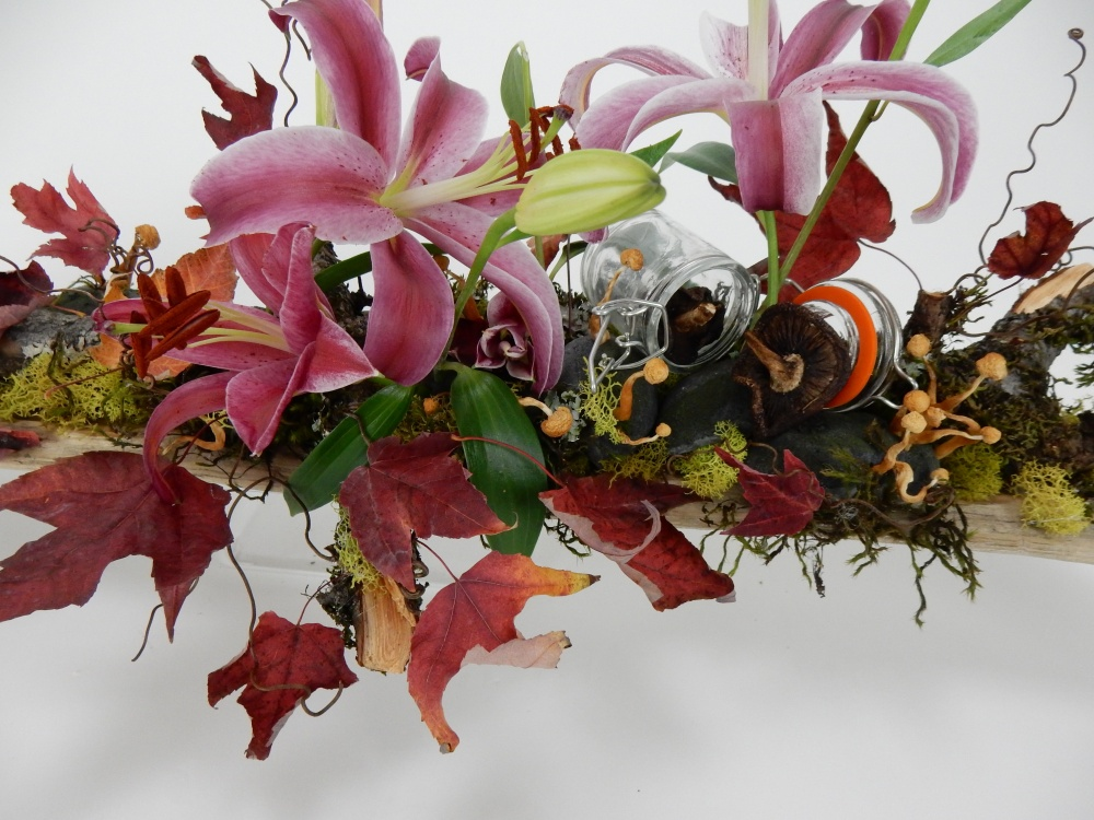 Grape vine tendrils on the autumn design