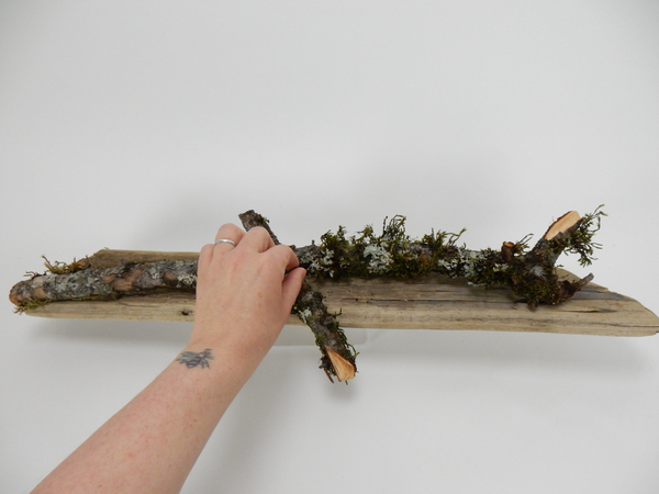 Place moss covered sticks on the driftwood