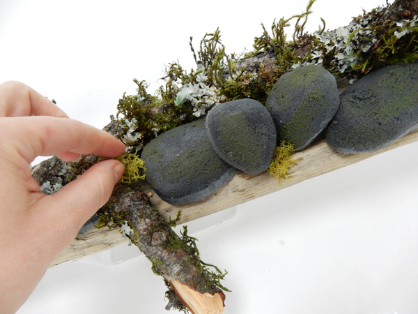 Place the pebbles on the driftwood and add reindeer moss to fill in the gaps between the pebbles