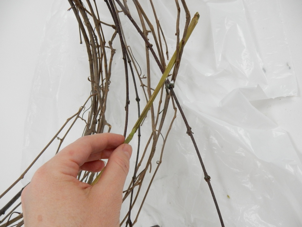 Press the stem end of decorative grass through the vine