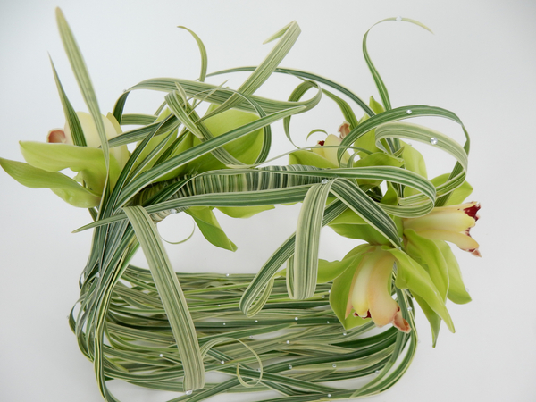 Cymbidium orchids on the basket handle