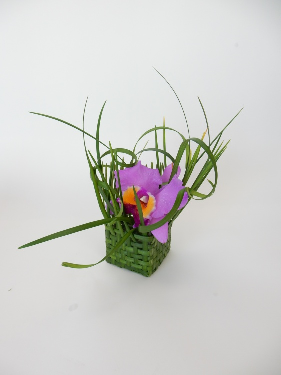 Cattleya orchid in a hand woven lily grass basket