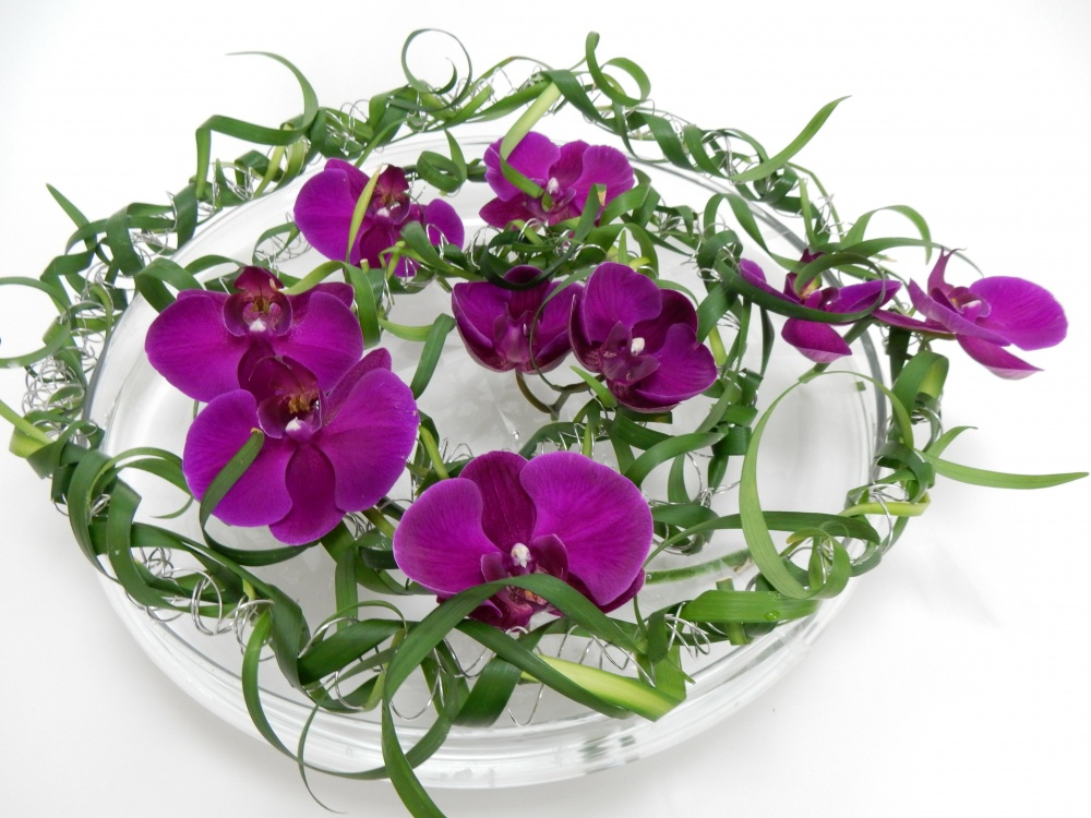Coiled wire, Phalaenopsis orchids and curled lily grass flower frog