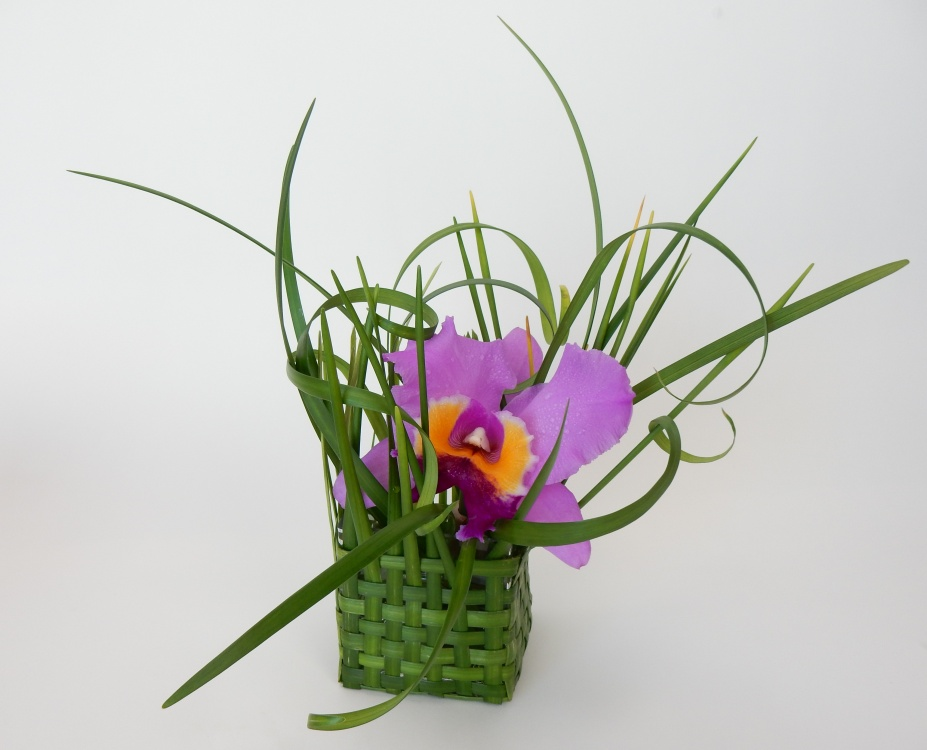 What is in a basket of spectacular floral art design