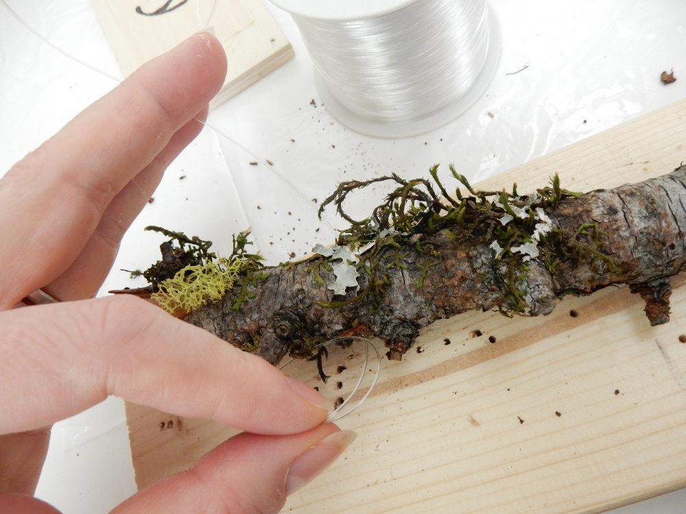Drill holes into the moss covered sticks and thread the line through.