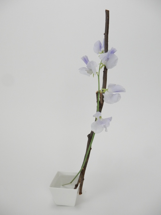 Twig armature