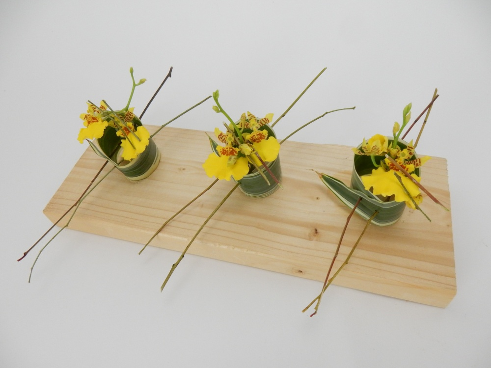 Skewer Dracaena leaves into a roll that supports a tiny water source for the Oncidium orchids