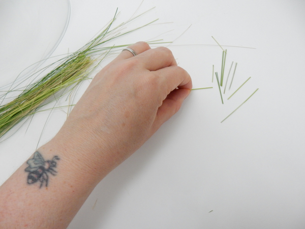 Cut grass into snippets
