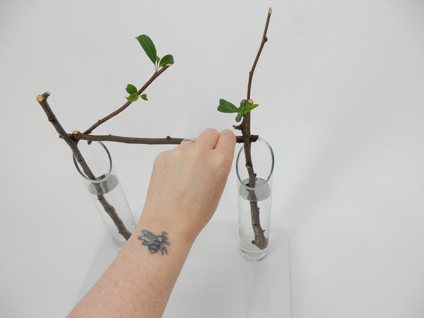 Place a horizontal stem so that it rests in the fork in the branches