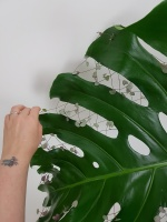 Criss-cross Monstera lace-up