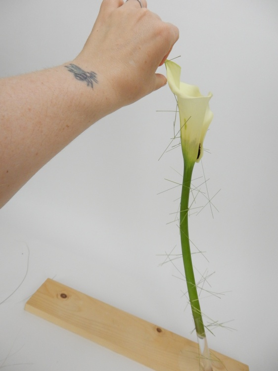 To extend all the way up the elegant flower stem